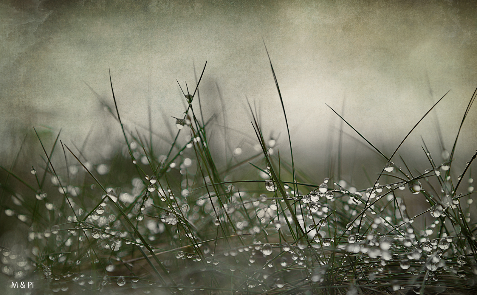3.Llueve, llueve,sigue lloviendo